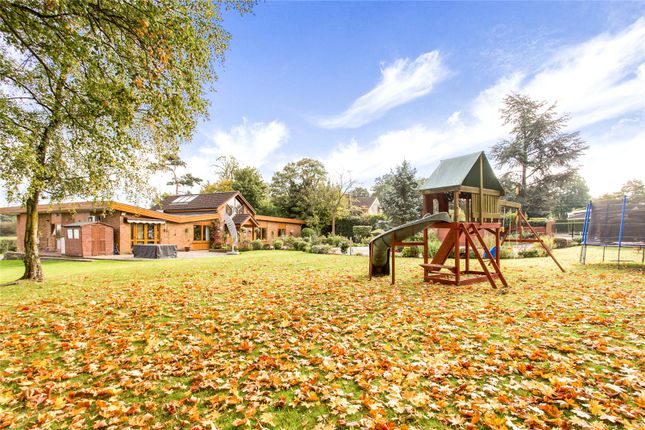 Thumbnail Detached bungalow for sale in Elstree Village, Hertfordshire