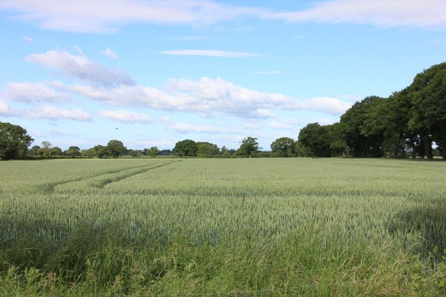 Land for sale in York Road, Easingwold, York
