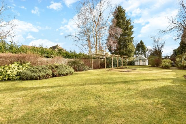 Thumbnail Detached house to rent in Forest Road, Tunbridge Wells