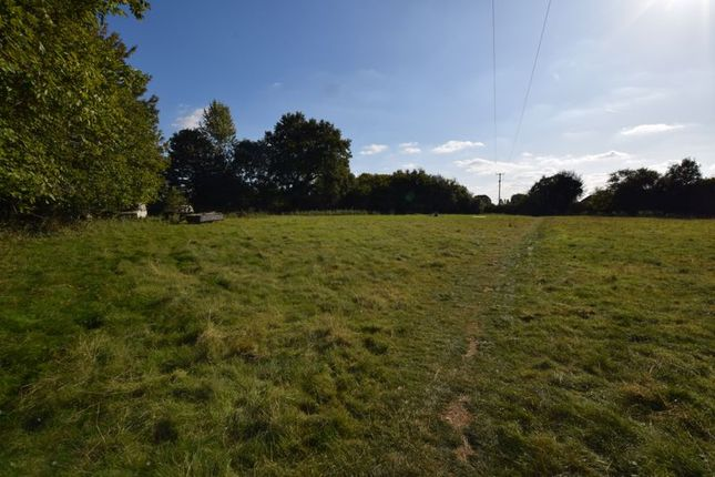 Photo 19 of With 4.58 Acres - Dunsells Lane, Ropley, Hampshire SO24