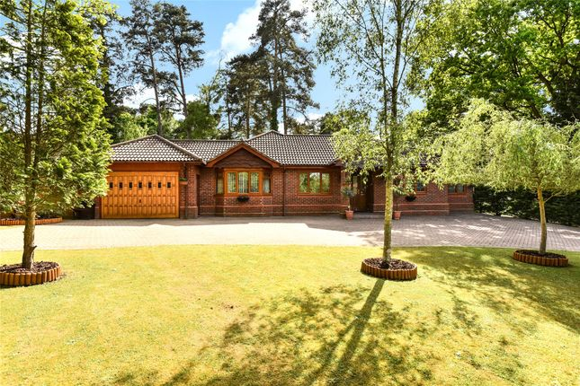 Thumbnail Detached house for sale in Heathermount Drive, Crowthorne, Berkshire