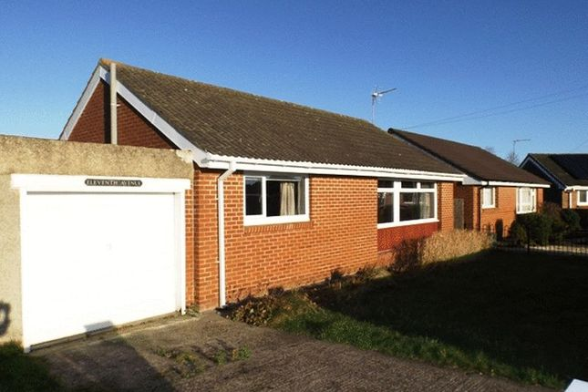 Bungalow to rent in Eleventh Avenue, Morpeth