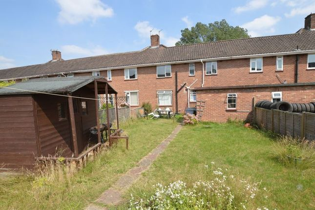 Thumbnail Terraced house for sale in Peckover Road, Off South Park Avenue, Norwich