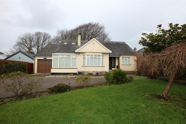 Thumbnail Detached bungalow for sale in Pendarves Road, Camborne, Cornwall