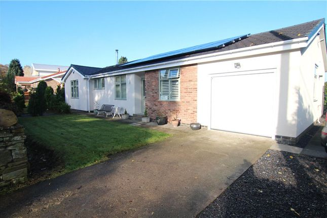 Thumbnail Detached bungalow to rent in The Rosses, Front Street, Esh