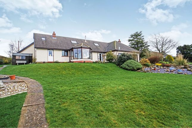 Thumbnail Detached bungalow for sale in Ruckcroft, Carlisle