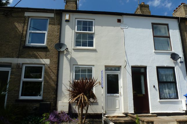 Thumbnail Terraced house to rent in Holly Road, Oulton Broad, Lowestoft