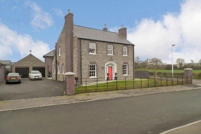 Thumbnail Detached house for sale in 19 Farriers Green, Carnreagh, Hillsborough