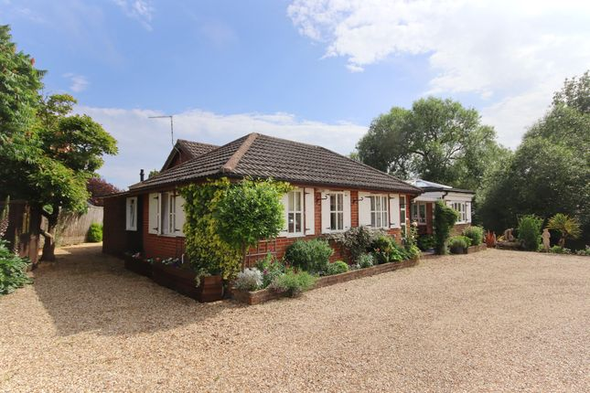 Thumbnail Detached bungalow for sale in High Street, Milford On Sea