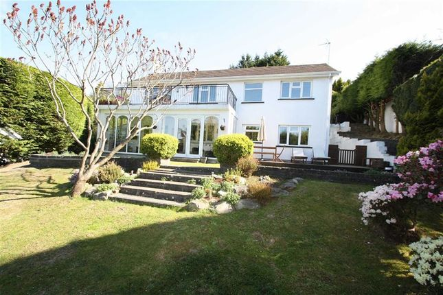Thumbnail Detached house for sale in Millhill Drive, Ballynahinch, Down