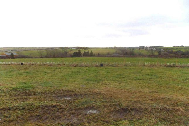 Thumbnail Land for sale in Butterknowle, Bishop Auckland