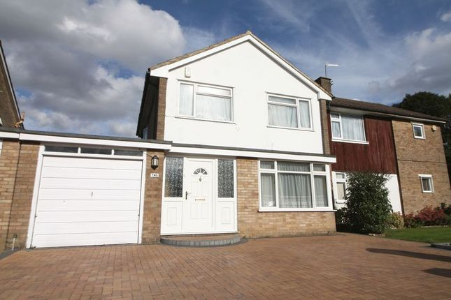 Thumbnail Semi-detached house to rent in Crossfell Road, Hemel Hempstead