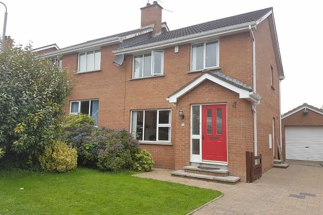 Thumbnail Semi-detached house to rent in Grove Crescent, Ballynahinch, Down