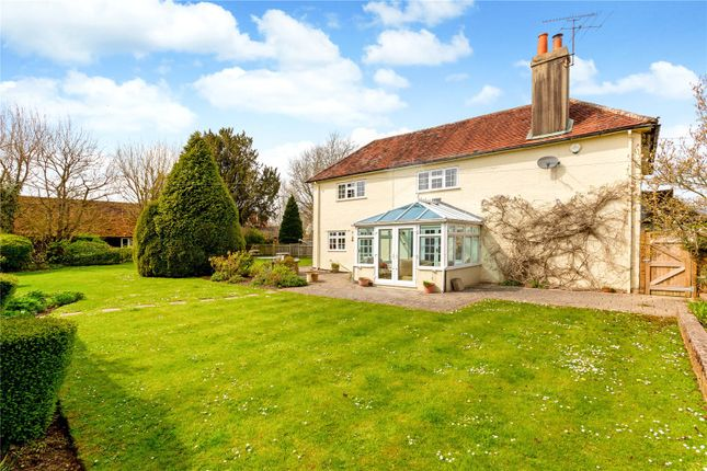 Thumbnail Detached house for sale in The Common, Dunsfold, Godalming, Surrey