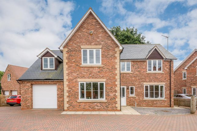 Thumbnail Detached house for sale in Phipps Road, Woodford Halse, Daventry