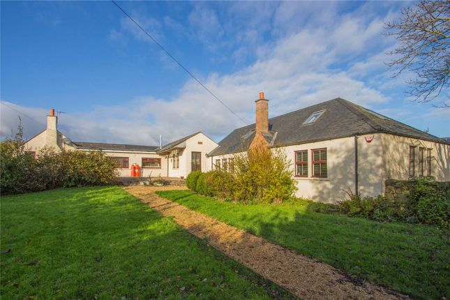 Thumbnail Equestrian property for sale in Bellrigg, Firthmuir Of Boysack, By Arbroath, Angus