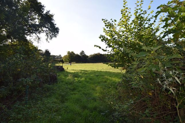 Photo 16 of With 4.58 Acres - Dunsells Lane, Ropley, Hampshire SO24