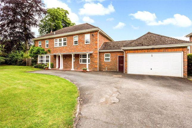 Thumbnail Detached house for sale in Woodfield Drive, Sandisplatt Road, Maidenhead, Berkshire