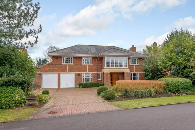 Thumbnail Detached house to rent in Adelaide Road, Walton-On-Thames