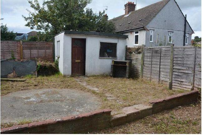 Garden of Ringmer Drive, Brighton BN1