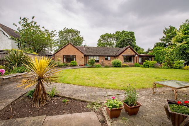 Thumbnail Bungalow for sale in Hinckley Road, Nuneaton