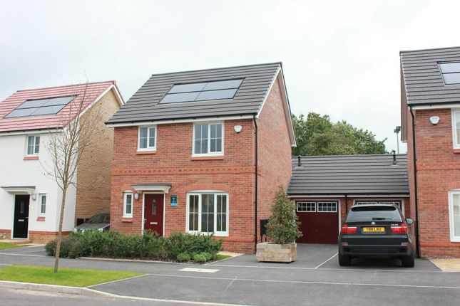 Thumbnail Detached house to rent in Bellevue Road, Tower Hill, Kirkby, Knowsley