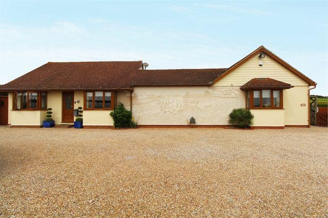 Thumbnail Detached bungalow for sale in Lower Burnham Road, Latchingdon, Chelmsford, Essex
