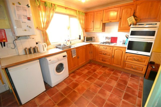 Thumbnail Town house to rent in Avon Way, Colchester, Essex