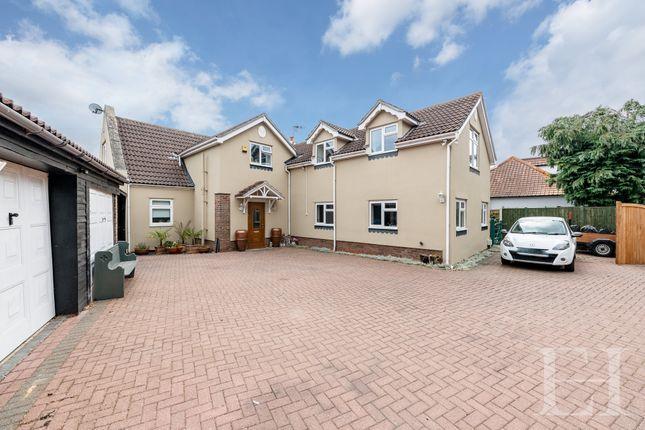 Thumbnail Detached house for sale in Coles Oak Lane, Dedham, Colchester