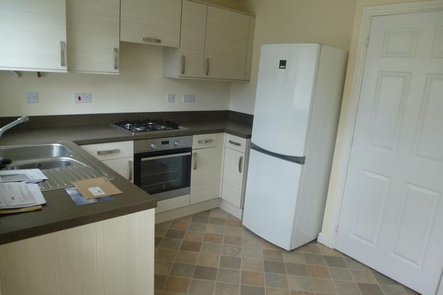 Thumbnail Semi-detached house to rent in Hawker Close, Hartlepool
