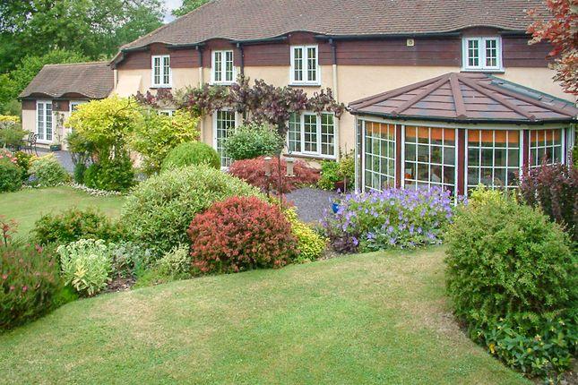 Thumbnail Detached house for sale in Blacklands Lane, Forton