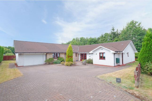 Thumbnail Detached bungalow for sale in 10 Drove Hill, Glasgow