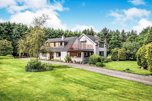 Thumbnail Detached house for sale in Tomatin, Inverness