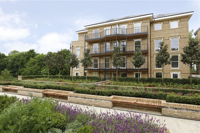 Thumbnail Flat to rent in Chambers Park Hill, Copse Hill
