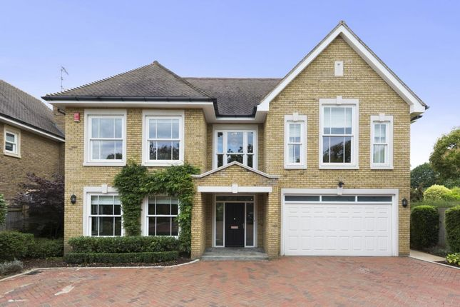 Thumbnail Detached house to rent in Gainsborough Place, Cobham