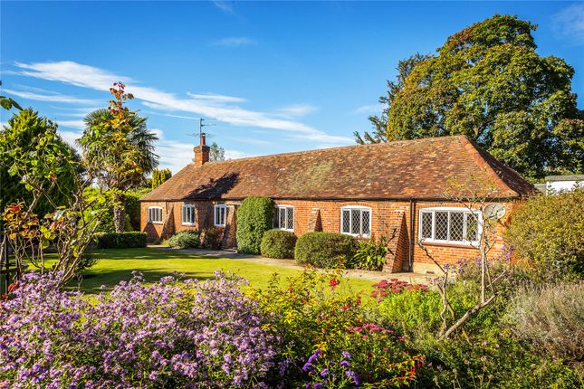 Thumbnail Bungalow for sale in Maybourne Rise, Woking