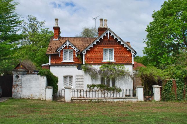 Thumbnail Detached house to rent in Lyndhurst, Hampshire