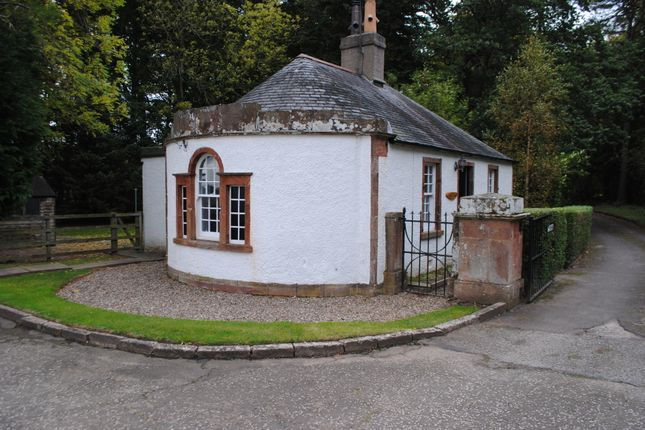 Thumbnail Cottage to rent in Inverkeilor, Arbroath