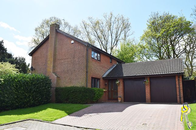 Thumbnail Detached house to rent in Leafenden Close, Darley Abbey, Derby