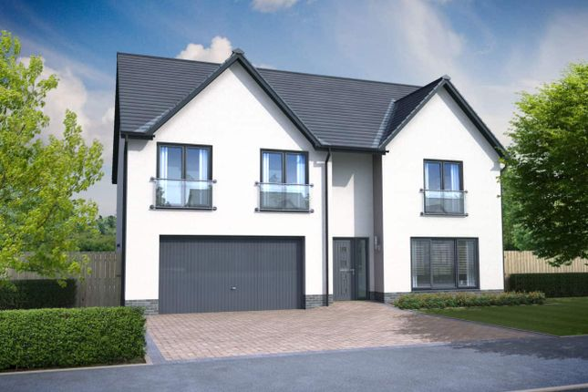 """Thumbnail Detached house for sale in """"Mitchell"""" at Church Place, Winchburgh, Broxburn"""