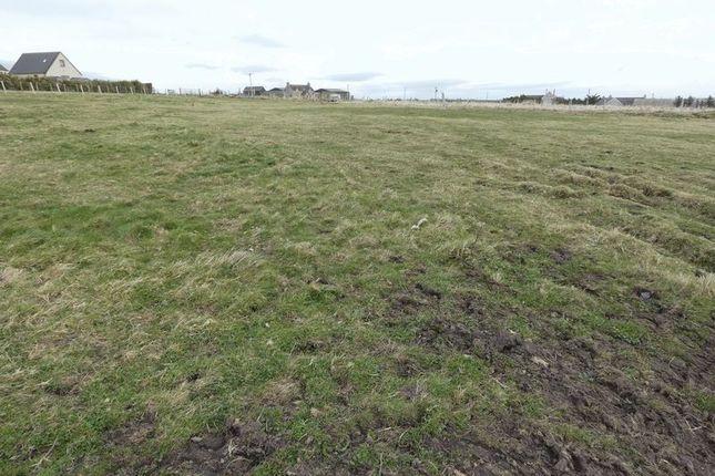 Photo 5 of Plot Of Land, Westside, Dunnet KW14