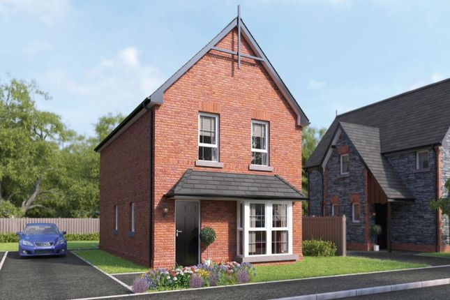 Thumbnail Detached house for sale in Millmount Village Park, Dundonald, Belfast