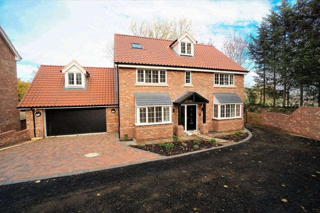Thumbnail Detached house for sale in Elton Park, Hadleigh Road, Ipswich, Suffolk