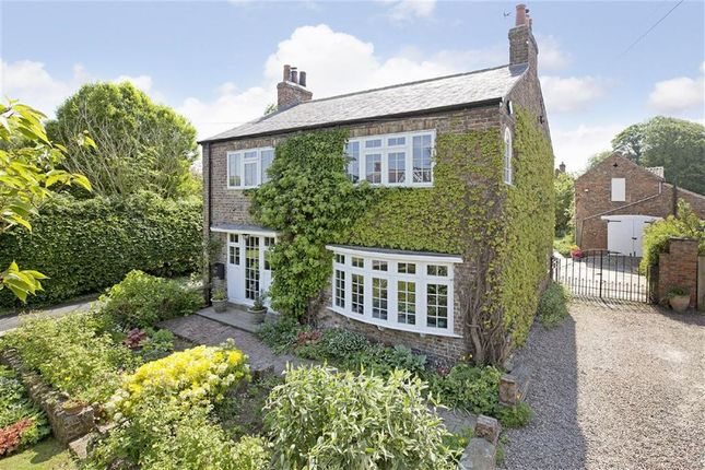 Thumbnail Detached house for sale in Kirk Hammerton, York