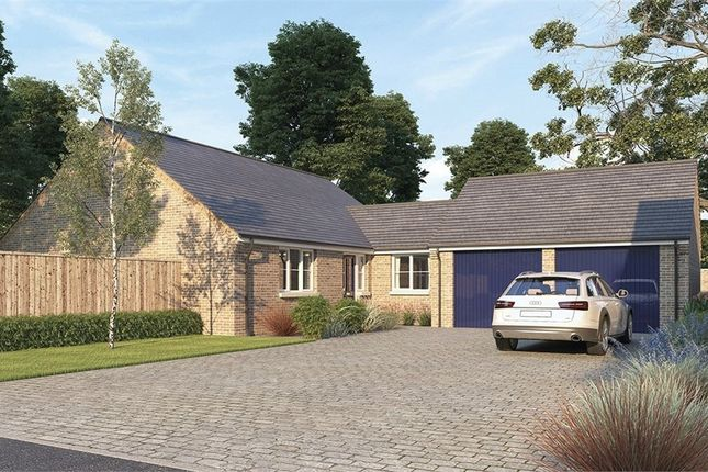 Thumbnail Detached bungalow for sale in The Windermere At Oak Tree Park, Stancliffe Homes, Shireoaks, Worksop, Nottinghamshire