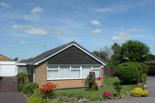 Thumbnail Detached bungalow to rent in The Green, Castle Donington, Derby