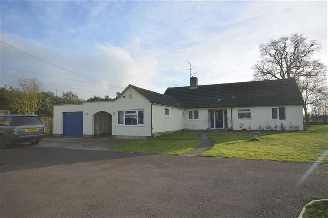 Thumbnail Bungalow for sale in Sticky Lane, Hardwicke, Gloucester