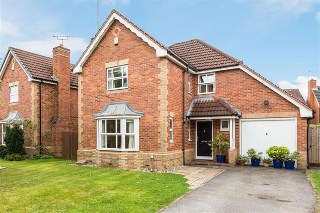 Thumbnail Detached house to rent in Kingfisher Reach, Collingham, Wetherby
