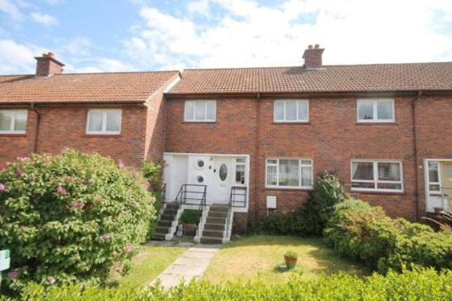 Thumbnail Terraced house to rent in Glendale Crescent, Ayr