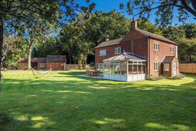 Thumbnail Cottage for sale in Neatherd Moor, Dereham
